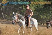 Сафари на лошадях